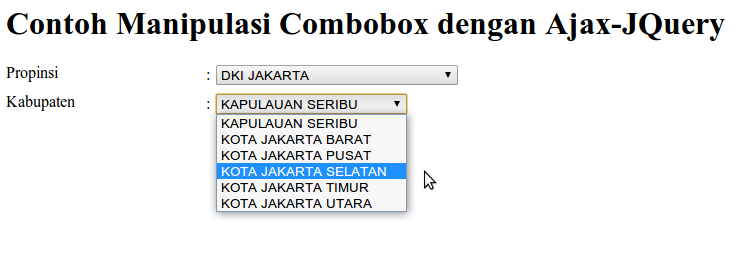 Tampilan Data di Combobox